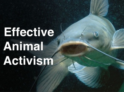 effective-animal-activism-1-638